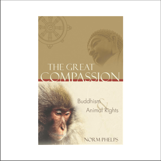 Introduction to The Great Compassion