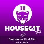 Deephouse First Mix - feat. PJ Parker