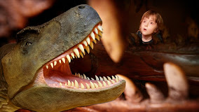 dinosaur museum in dorchestre