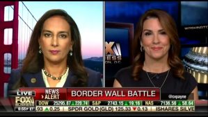 Harmeet Dhillon Law Trump Border Wall Fox News