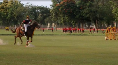 Horse riding demonstration 13