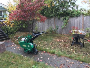 get your yard ready for spring