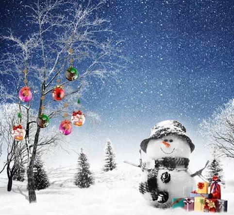 5X7ft Vinyl Backdrop Christmas Snowman Photography Studio