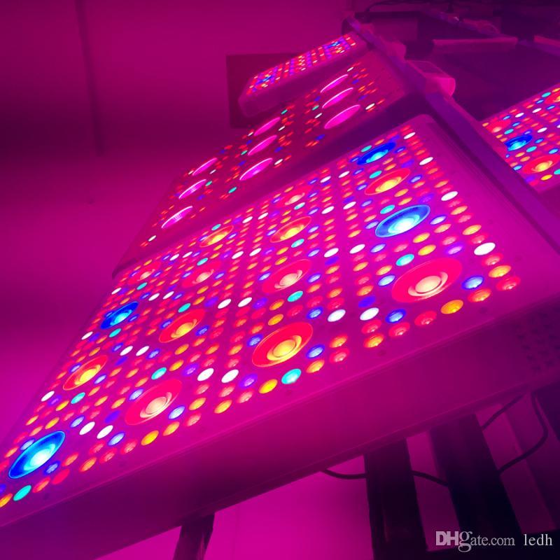 Plant Lighting Hydroponics Www Lightneasy Net