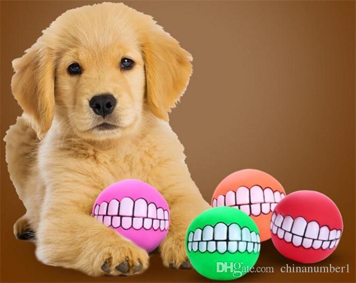 Forwall Bilder Canvas Lustige Tier Selfies Hunde O1 100cm X