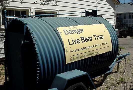 beartrap