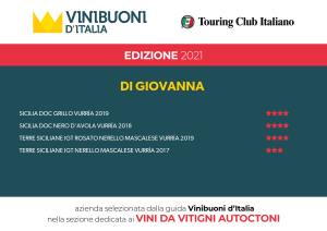 GUIDA VINIBUONI D'ITALIA EDIZIONE 2021