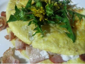 omelettes are diabtes friendly