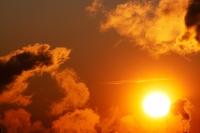 Study debunks link between low vitamin D and type 2