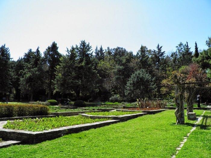 Ο μεγαλύτερος βοτανικός κήπος της ανατολικής Μεσογείου βρίσκεται στην Αθήνα. Και οι περισσότεροι δεν τον γνωρίζουν καν! - Εικόνα 22