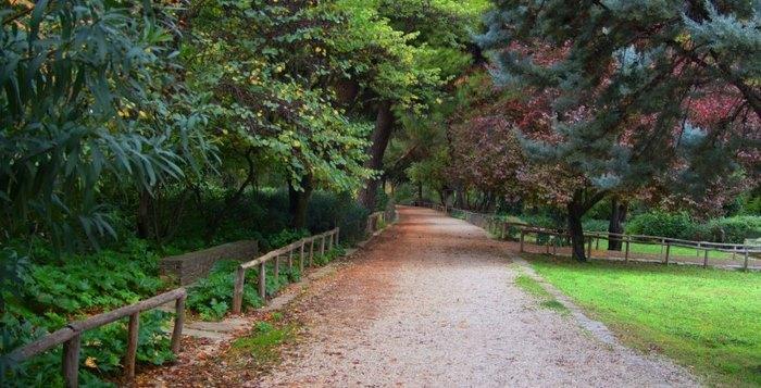 Ο μεγαλύτερος βοτανικός κήπος της ανατολικής Μεσογείου βρίσκεται στην Αθήνα. Και οι περισσότεροι δεν τον γνωρίζουν καν! - Εικόνα 4