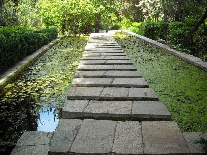 Ο μεγαλύτερος βοτανικός κήπος της ανατολικής Μεσογείου βρίσκεται στην Αθήνα. Και οι περισσότεροι δεν τον γνωρίζουν καν! - Εικόνα 5