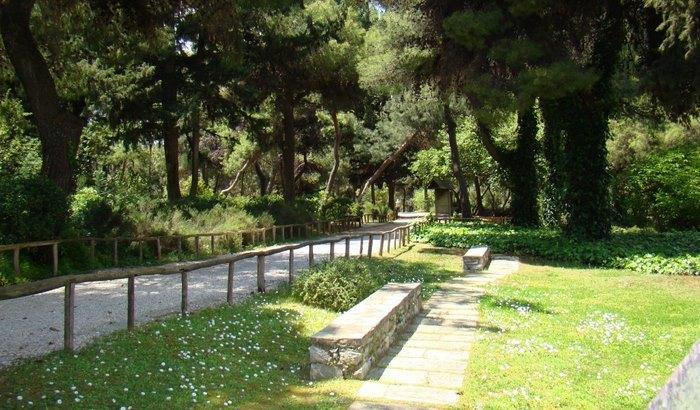 Ο μεγαλύτερος βοτανικός κήπος της ανατολικής Μεσογείου βρίσκεται στην Αθήνα. Και οι περισσότεροι δεν τον γνωρίζουν καν! - Εικόνα 9