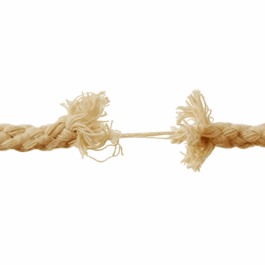 Conexión real – Estamos cada vez más conectad@s y sol@s al mismo tiempo.