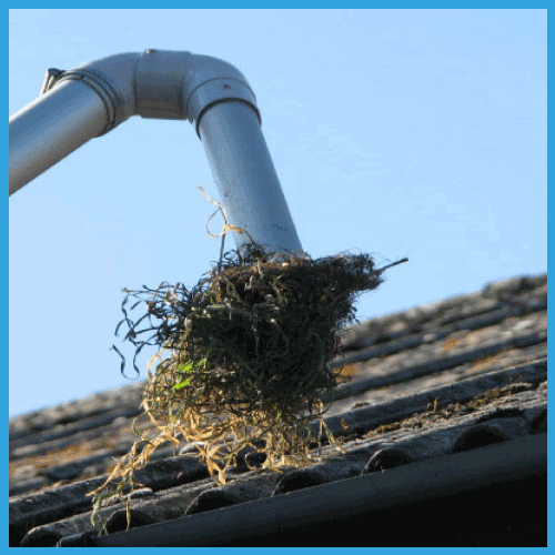 Gutter Cleaning Bordon