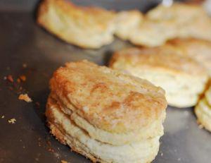Food Log Tog Biscuits