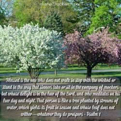 Psalm Sunday-Psalm 1