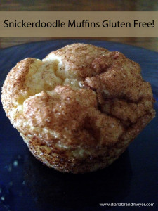 gluten-free snicker doodle muffin on blue plate