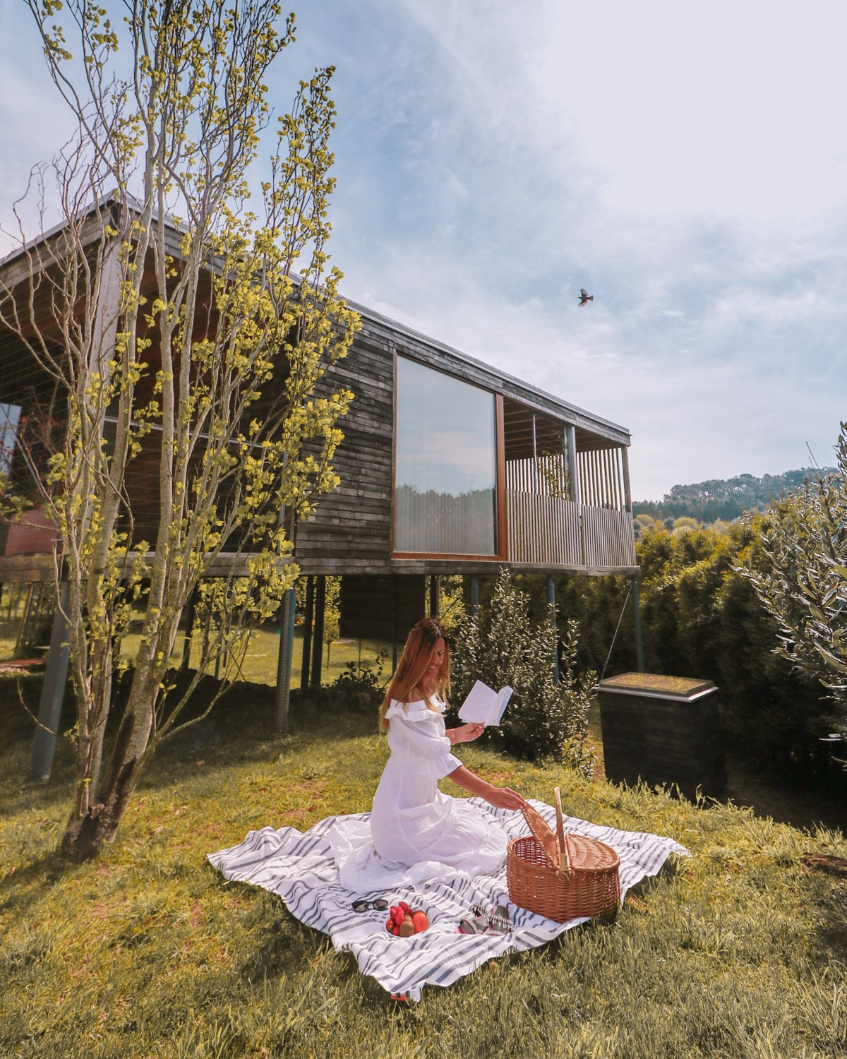 Glamping in Galicia: Staying in a Treehouse