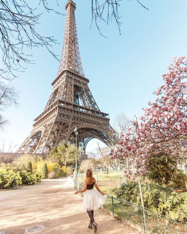 Paris tulle skirt