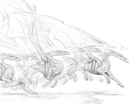 DragonNature II_sketch_008 copy