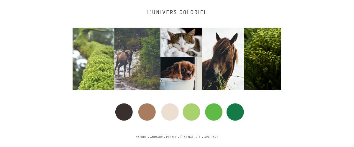 univers coloriel