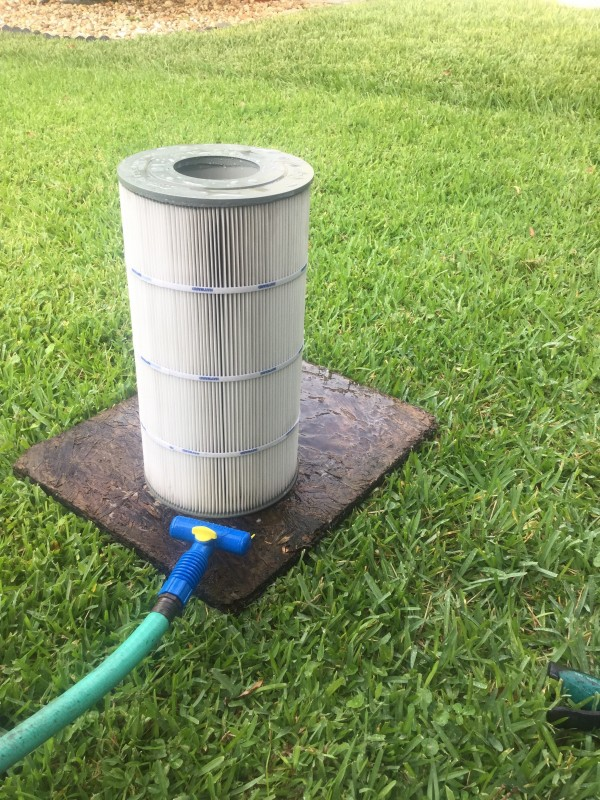 Pool filter cleaner