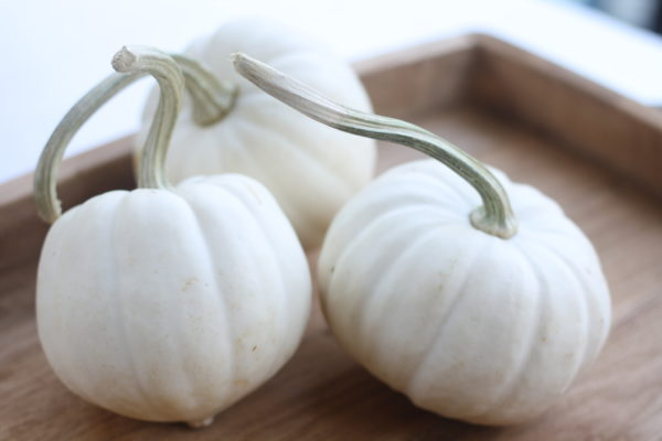 real-white-pumpkins