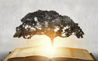 Your Innter Strength: Wisdom represented by book and tree