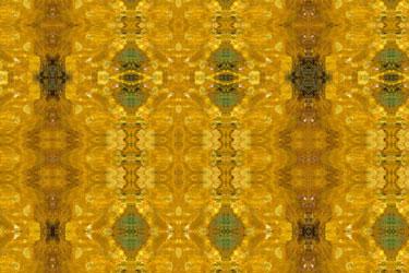 Gold Leaf I