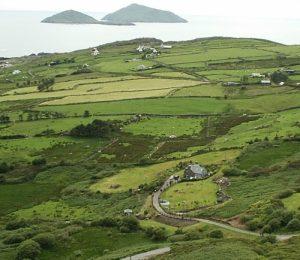 Ireland 101: Image of quilt-like Irish landscape.