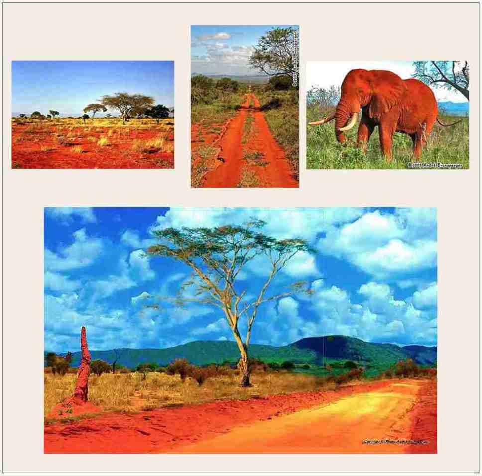 Safaris Tsavo Ouest en camp Kenya de Diani 2jours