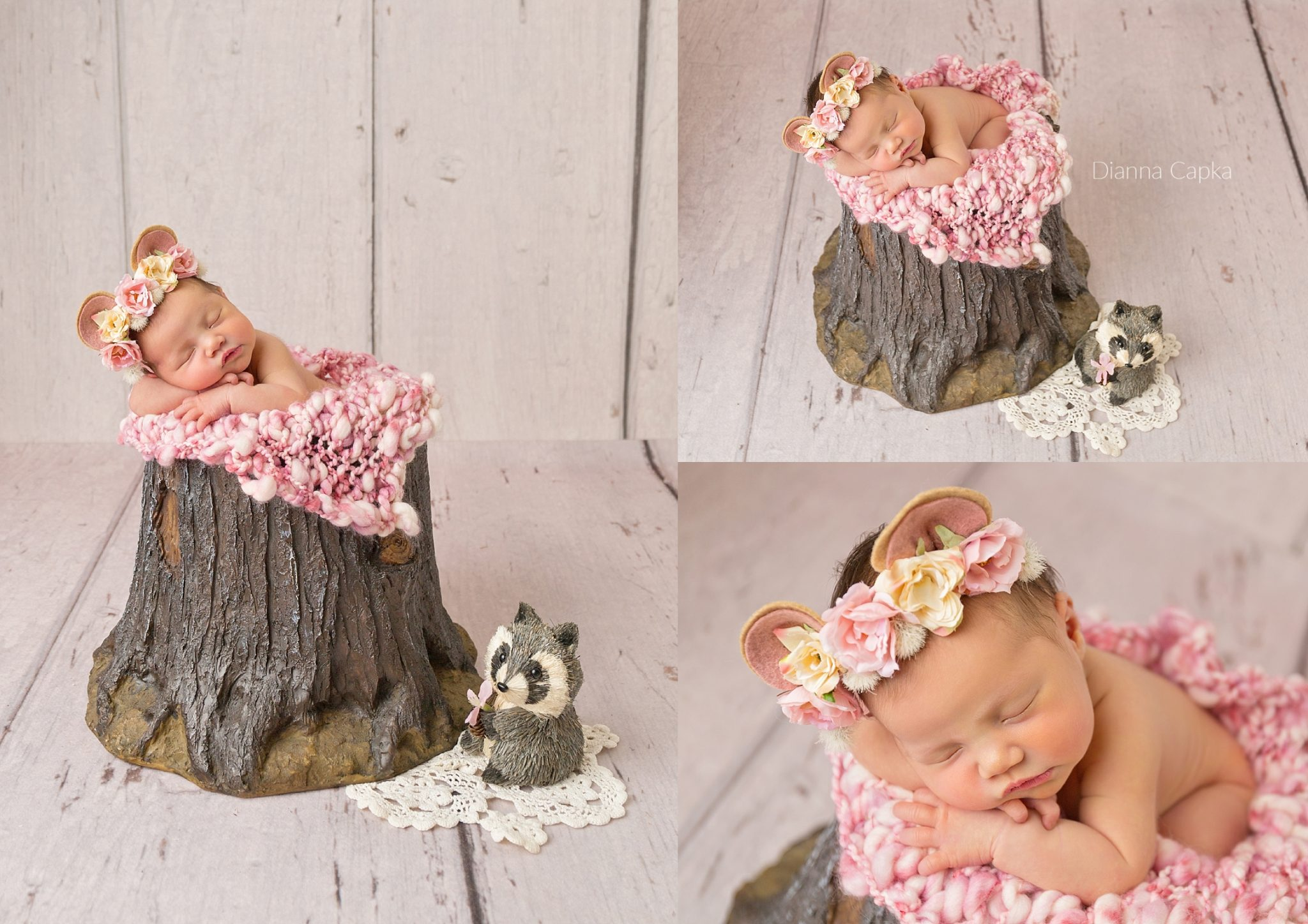Pink forest theme newborn session bear and raccoon