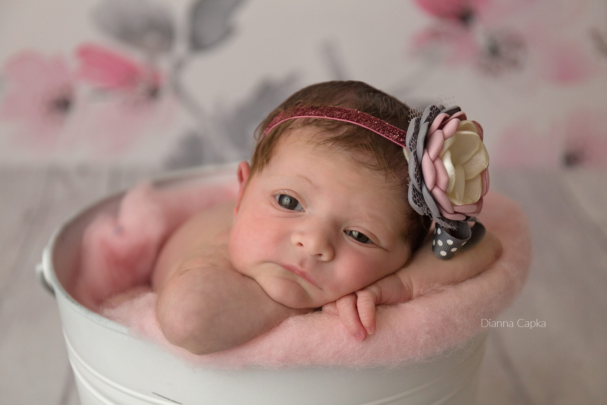 awake newborn girl ephrata pa newborn photographer