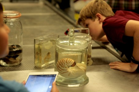 WPY Academy, Natural History Museum London