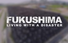Fukushima: Living with a Disaster[Video]