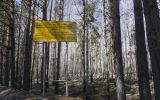 In Russia This Week, a Radioactive Plume That's Clouded in Secrecy