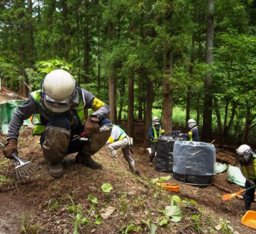 Missing the (Contaminated) Forest for the (Decontaminated) Trees in Fukushima: Prof Robert Jacobs