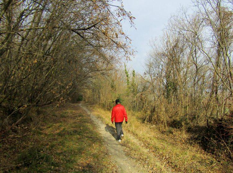 sentiero monte Calbarina