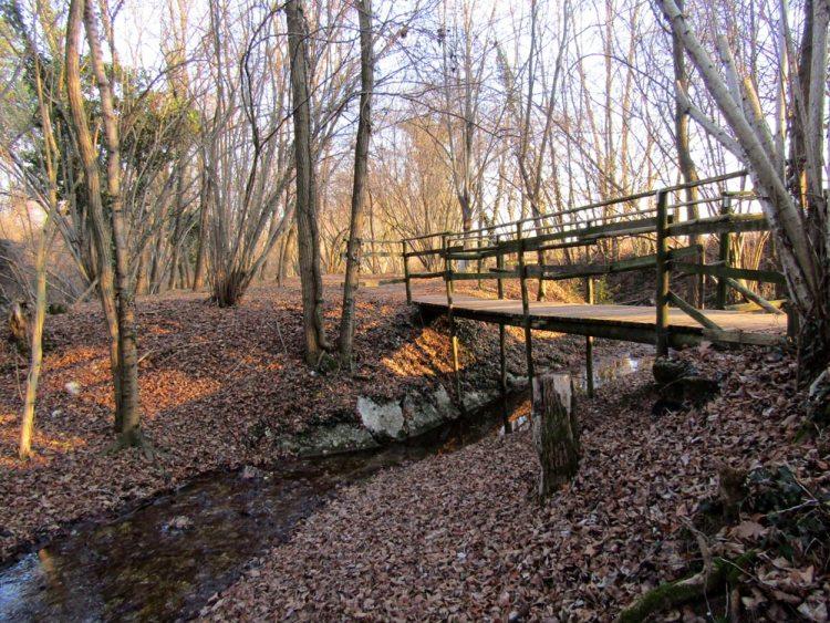 sentiero natura san zenone degli ezzelini
