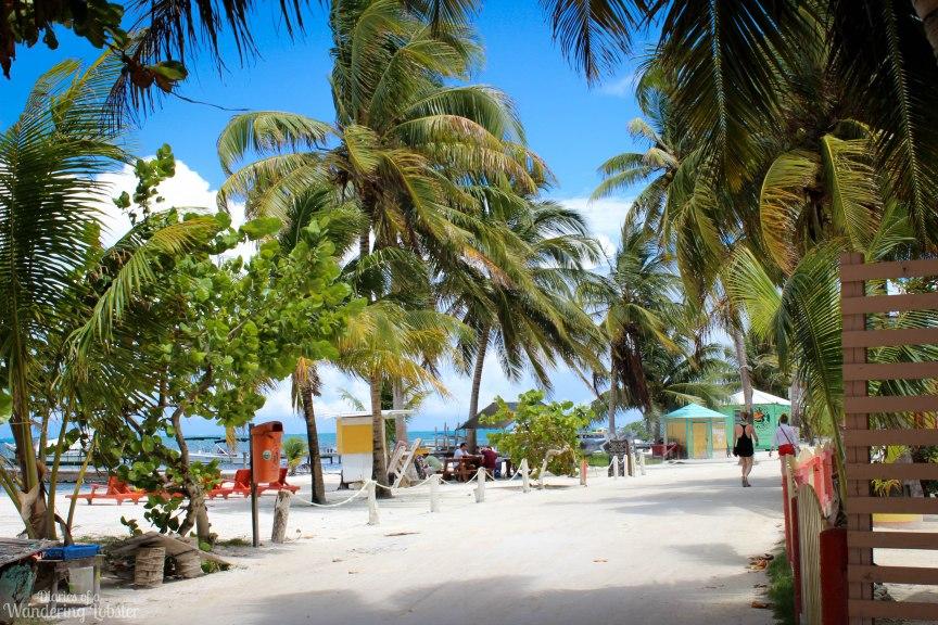 Main Street Caye Caulker Belize