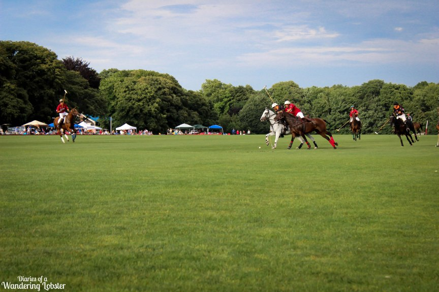 A Saturday afternoon polo match in Newport, Rhode Island