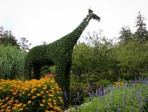 The green giraffe