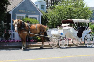 Take a carriage ride