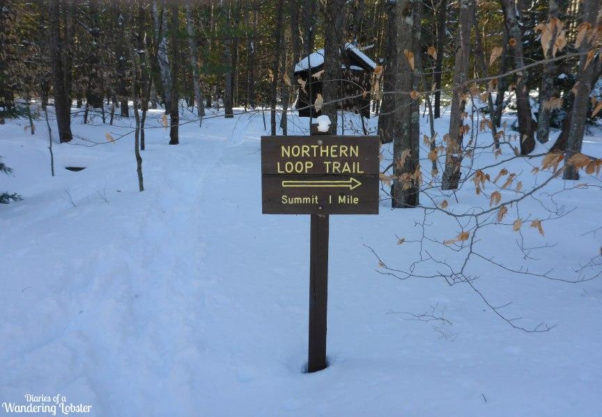 [img] cross-country skiing in Maine Bradbury Mountain State Park