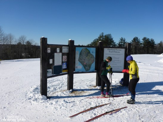 Pineland Farms XC Ski