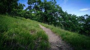 southwest ridge trail pleasant mountain