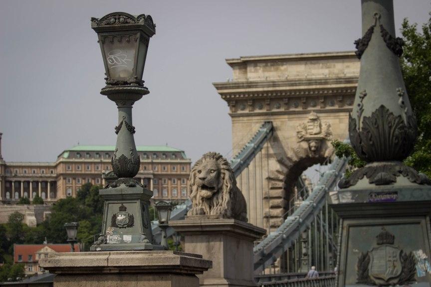 Cable Bridge Budapest