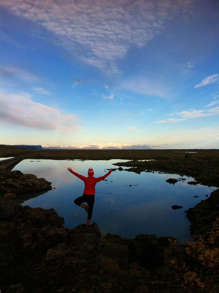 Iceland tree pose south coast and jokulsarlon lagoon