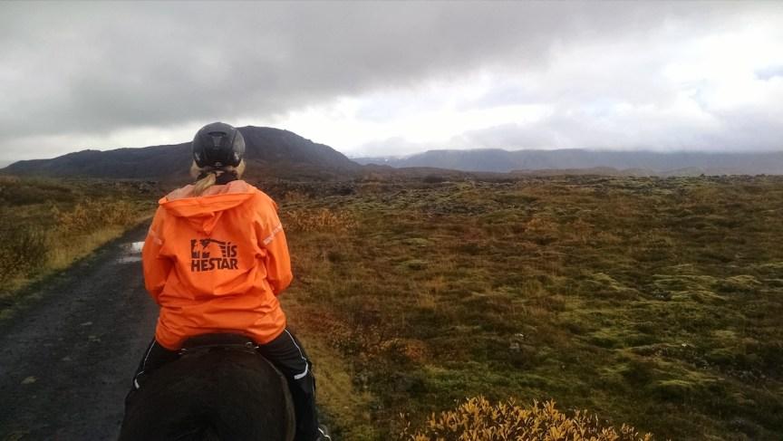Lava fields horseback riding in Iceland